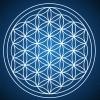 Geometria Sagrada: flor da vida, sólidos platônicos e o cubo de Metatron
