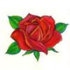 Símbolos para tatuagem feminina no braço