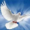 Símbolos do Espírito Santo