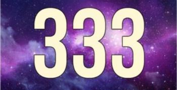 Numero 333