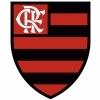 Símbolo do Flamengo: significado e simbologia do emblema