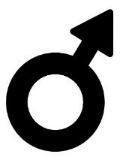 Simbolos Masculinos E Femininos